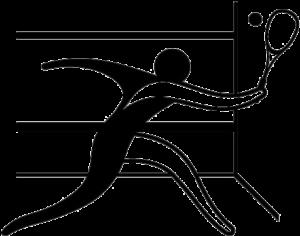 symbol courts de squash ligue pays de la loire