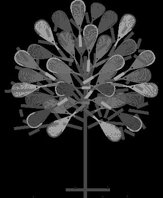 ligue-squash-pdl-arbre-raquettes-formations